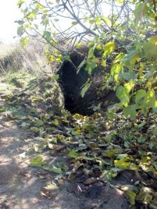 gruta-10-11-06