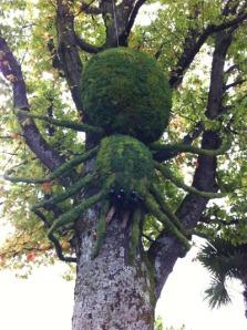 arña gigante Montreux