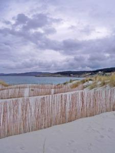 barreras en la duna