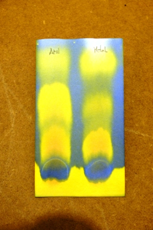 cromatografía vino 1-12-13