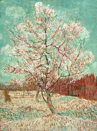 melocotonero Van Gogh