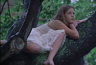 3_sofia_coppola_favorite_films_the_virgin_suicides