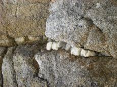 cuarzo en granito, pl.san pedro2
