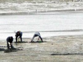 mariscadores en enero