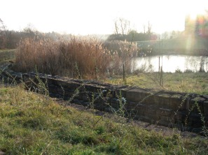 estanque frente al hosp Kircberg